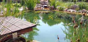 Zahradní jezírka: Koupací jezírko Běchovice