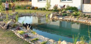 Zahradní jezírka: Koupací jezírko Čečelice