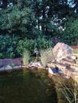 Zahradní jezírka: Koupací jezírko Zlatá03