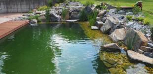 Zahradní jezírka: Koupací jezírko klokočná