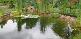 Zahradní jezírka: Okrasné jezírko Dolní Břežany