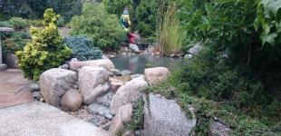 Zahradní jezírka: Okrasné jezírko Hanspaulka
