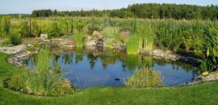 Zahradní jezírka: Stavba jezírka Babice - jezírko je hotovo