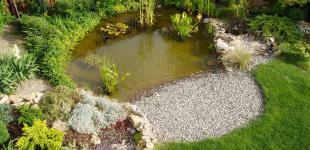 Zahradní jezírka: Zahradní jezírko - Veliká Ves