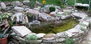 Zahradní jezírka: Zahradní jezírko