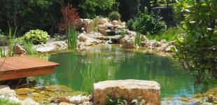 Zahradní jezírka: jezirko bechovice02