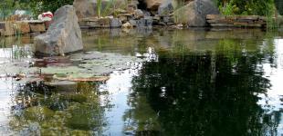 Zahradní jezírka: koupaci jezirko mnichovice