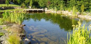 Zahradní jezírka: koupaci jezirko sazava03