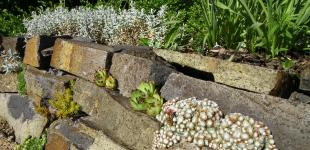 Zahradní jezírka: suché zídky - skalka babice