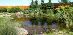 Zahradní jezírka: zahradni jezirko babice03