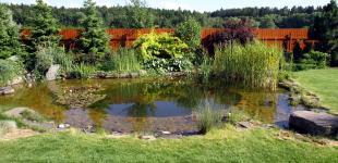Zahradní jezírka: zahradni jezirko babice04