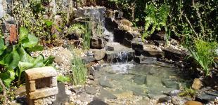 Zahradní jezírka: zahradni jezirko beroun
