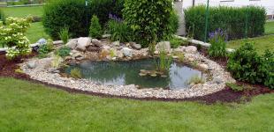 zahradni jezirko dubecek