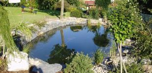 Zahradní jezírka: zahradni jezirko klecany