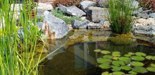 Zahradní jezírka: zahradni jezirko lhota02