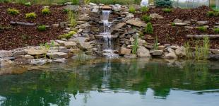 Zahradní jezírka: zahradni jezirko mnichovice