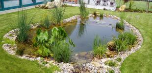 Zahradní jezírka: zahradni jezirko nebusice02