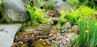Zahradní jezírka: zahradni jezirko pruhonice