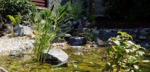 Zahradní jezírka: zahradni jezirko rez03