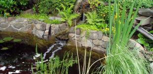 Zahradní jezírka: zahradni jezirko tremblaty